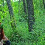 King Arthur – Motus | Sezione Aurea