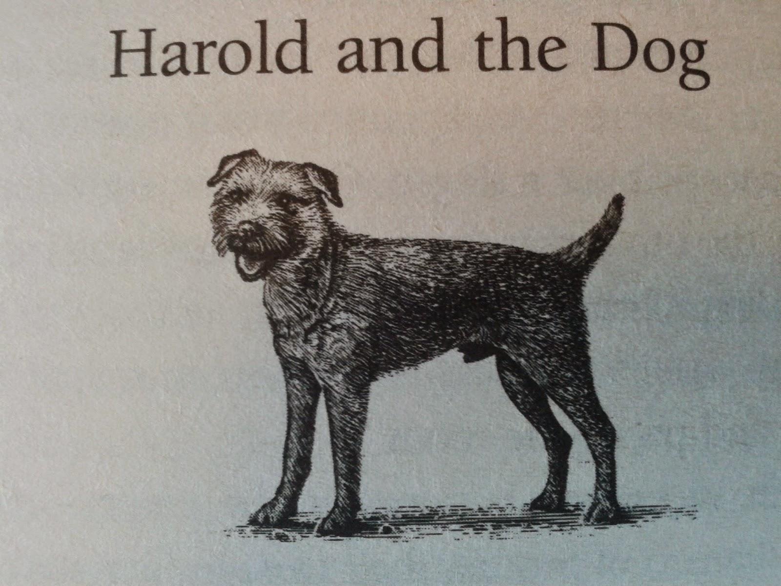 Harold Fry bok