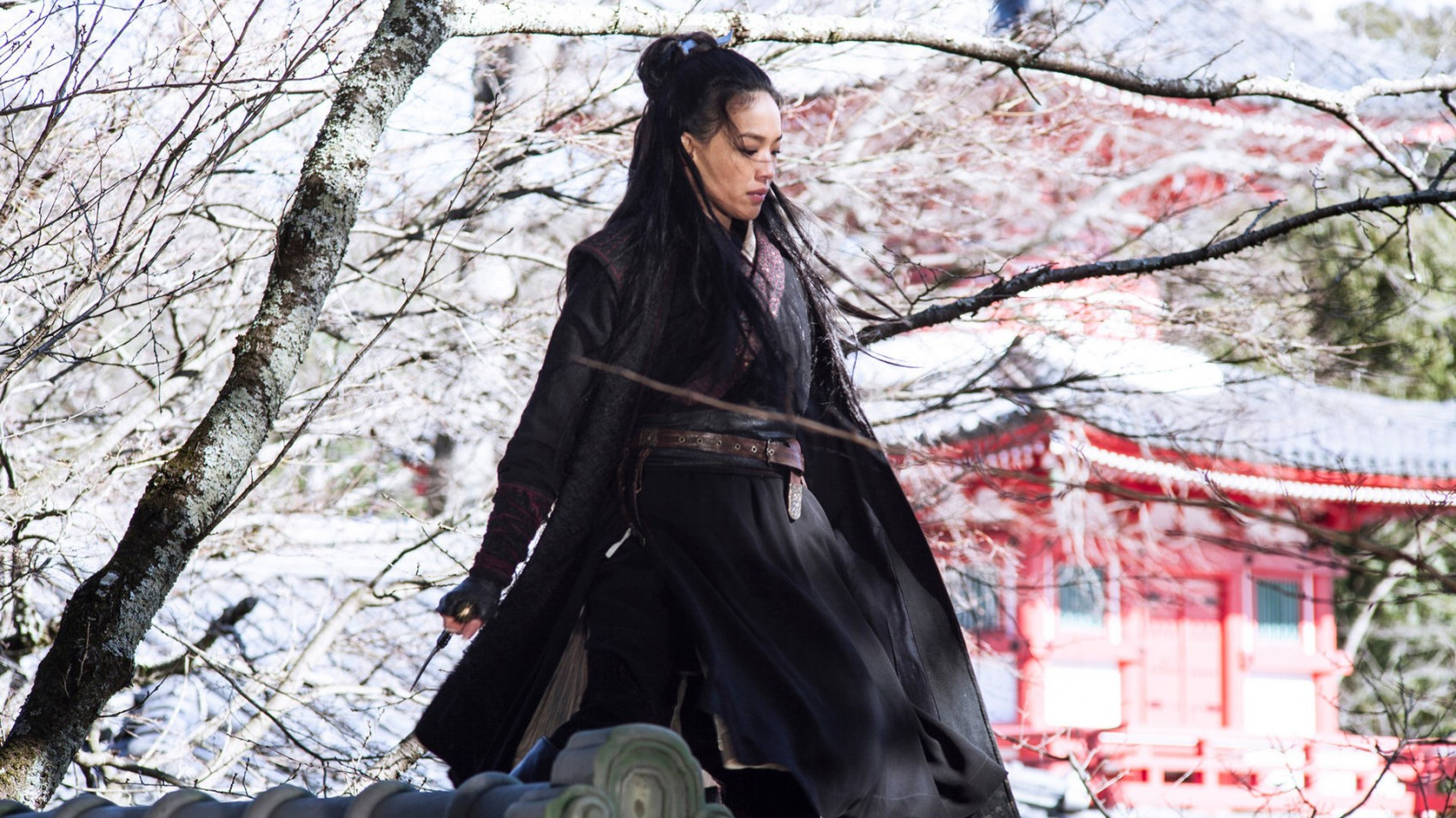 the assassin hou hsiao hsien