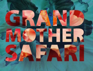 grandmother-safari-album