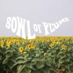 Bowl of Plumes – Ben Seretan