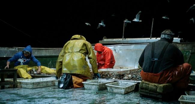 Pescatori di corpi, Michele Pennetta, 2016