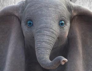 Dumbo-2019-posters