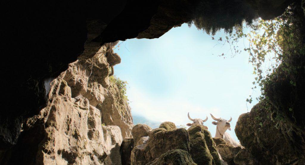 il-buco-di-michelangelo-frammartino-still-cave-cows-new-framing-e1627305979147